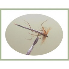 Detached Daddy Long Legs - Natural