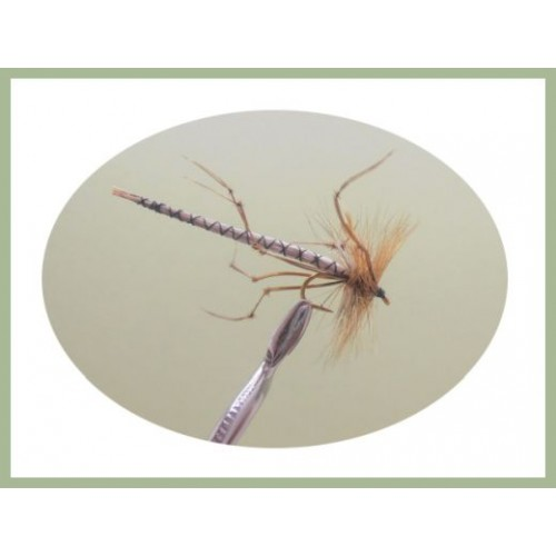 24 Gold Head Olive Black /& Stonefly Nymphs Trout Fly Fishing Flies-Dragonflies