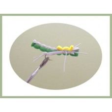Green and Yellow Grasshopper