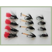 12 BARBLESS Wet Flies - Zulu, Bibio & Black Pennell