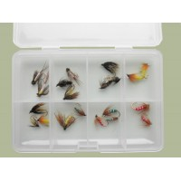 Comp Box - 20 Mixed Caddis and Sedge Nymph Flies