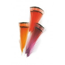 Golden Pheasant Tippet , selected tippets