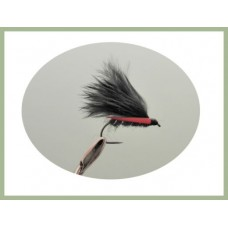 Barbless Black Cormorant
