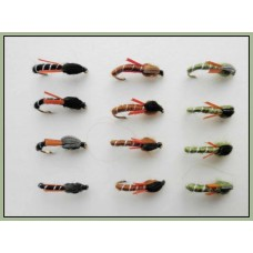 12 Biot Buzzer - Mixed Colours