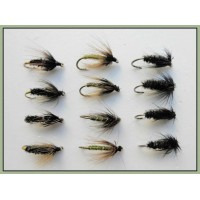 12 Wet Flies - Black & Peacock, Coch y bondhu & Greenwell Hackled