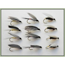 12 Wet Flies - Coachman,Iron Blue & Grey Monkey