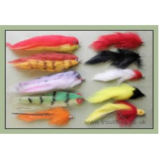 Bumper Pack 10 Mixed Pike Flies