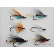 6 Salmon Singles (Garry Dog Blue Charm Silver Doctor Polar White Potato Fly Anne Greenway)