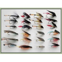 24 Large Hook, Sea Trout, 8 Varieties