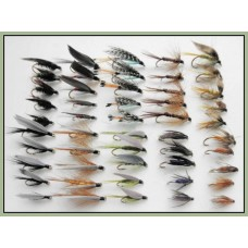 50 Wet Flies - 10 varieties