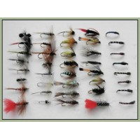 40 Mixed Trout flies