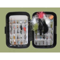 50 Budget Boxed Flies