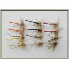 12 Mixed Coloured Daddy Long Legs