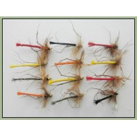12 Goldhead Detached Coloured Daddy Long Legs