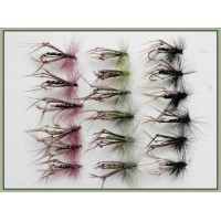 18 Hoppers- Coloured Hackles - Claret, Black, Olive