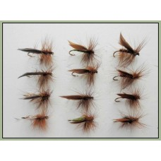 12 Sedge Dries, Olive Silver and Brown