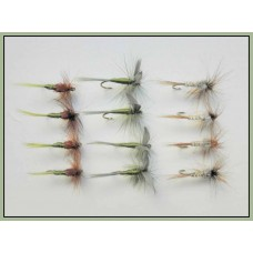 12 Dry Flies - Hatching Olive, Olive Dun & Kites Imperial