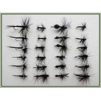 24 Black Dries, Spider, Gnats, Midge, Ants