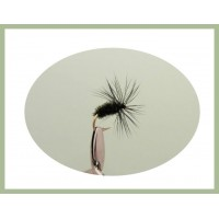 Black and Peacock Dry Fly