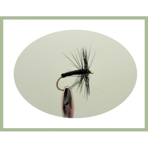 24 Dry Trout Flies Fly Fishing Gnat /& Ants Sizes,12 to 18 Black Spider