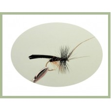 Black Horned Sedge Fly