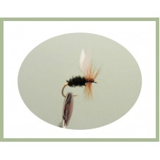 Coachman Dry Fly
