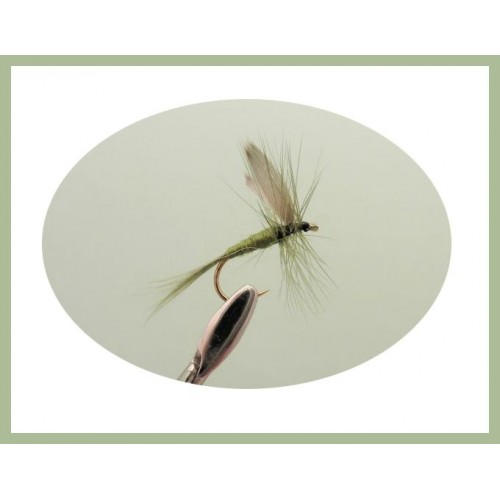 Fishing Flies 8 Pack Blue Dun Dry Trout Flies Mixed Size 12 to 16 Dry Flies