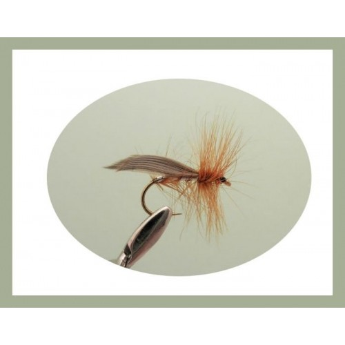 6 Pack dry trout flies Sedge Dry Flies Green Peter choice of sizes