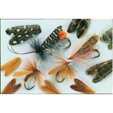 Feather Caddis Wings