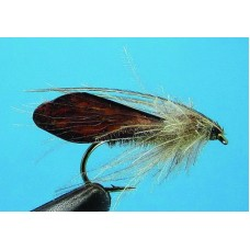 Sedge Wings
