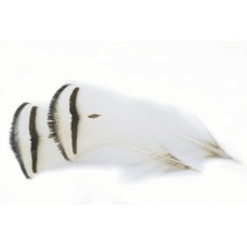Amherst Pheasant Tippets