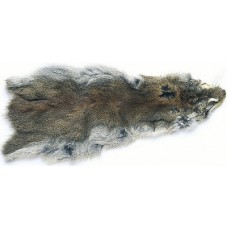 Full Squirrel Skin