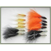 12 Goldhead Dancer, White Black & Orange