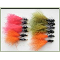 12 Goldhead Dancer,Red, Olive and Orange