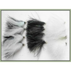 12 Mixed Cats Whiskers, Mixed Varietys