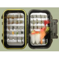 Vera's Beginners Box - 40 Mixed Flies