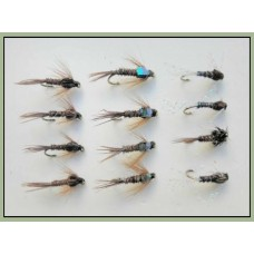 12 Pheasant Tail, Pearly,Natural & Flash Head