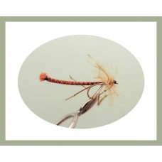Detached Daddy Long Legs - Orange
